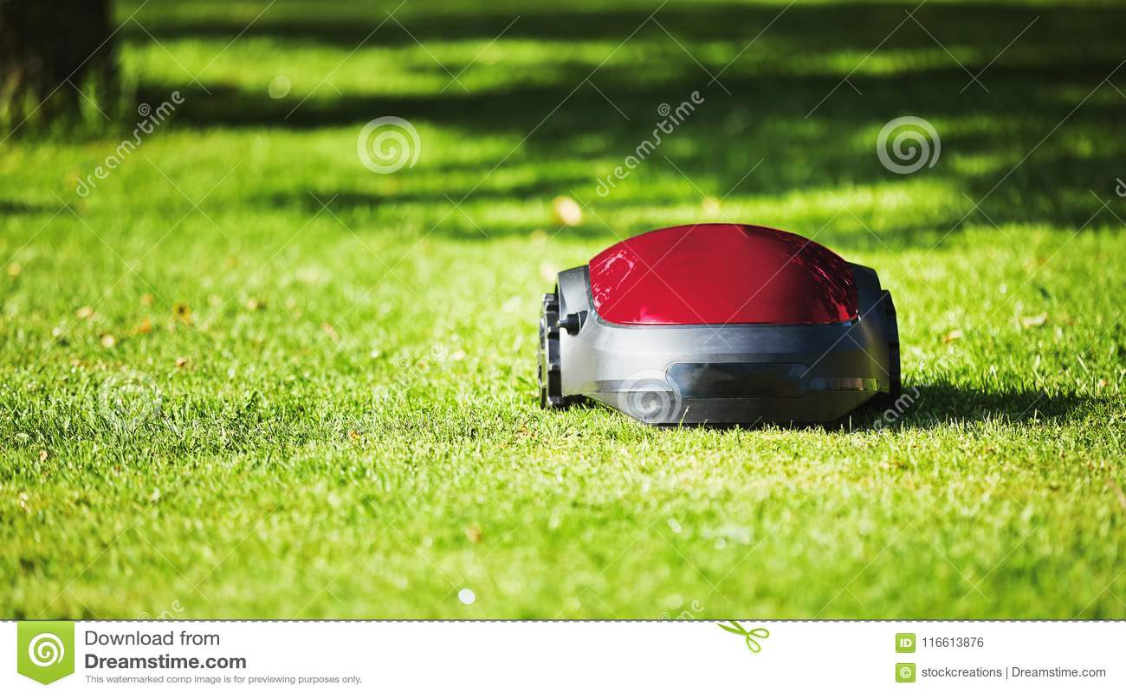 Falciatrice da giardino robot sul prato di estate nel giardino