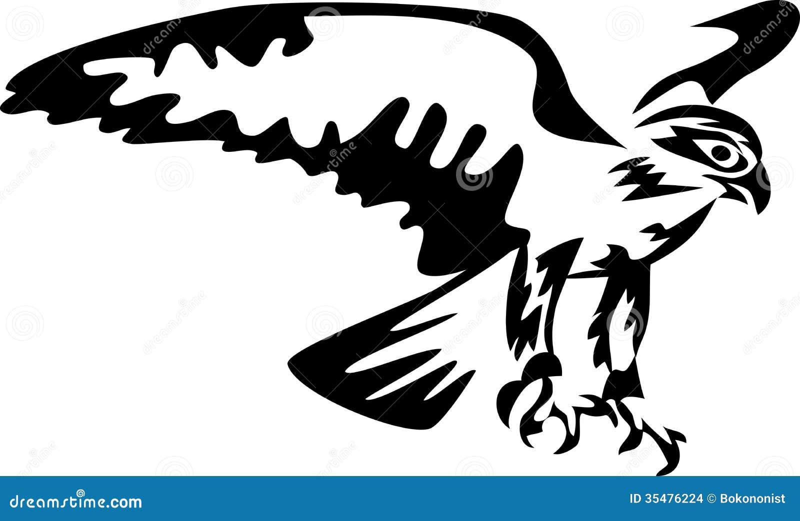 Falco illustrazione vettoriale illustrazione di preda for Immagini vector