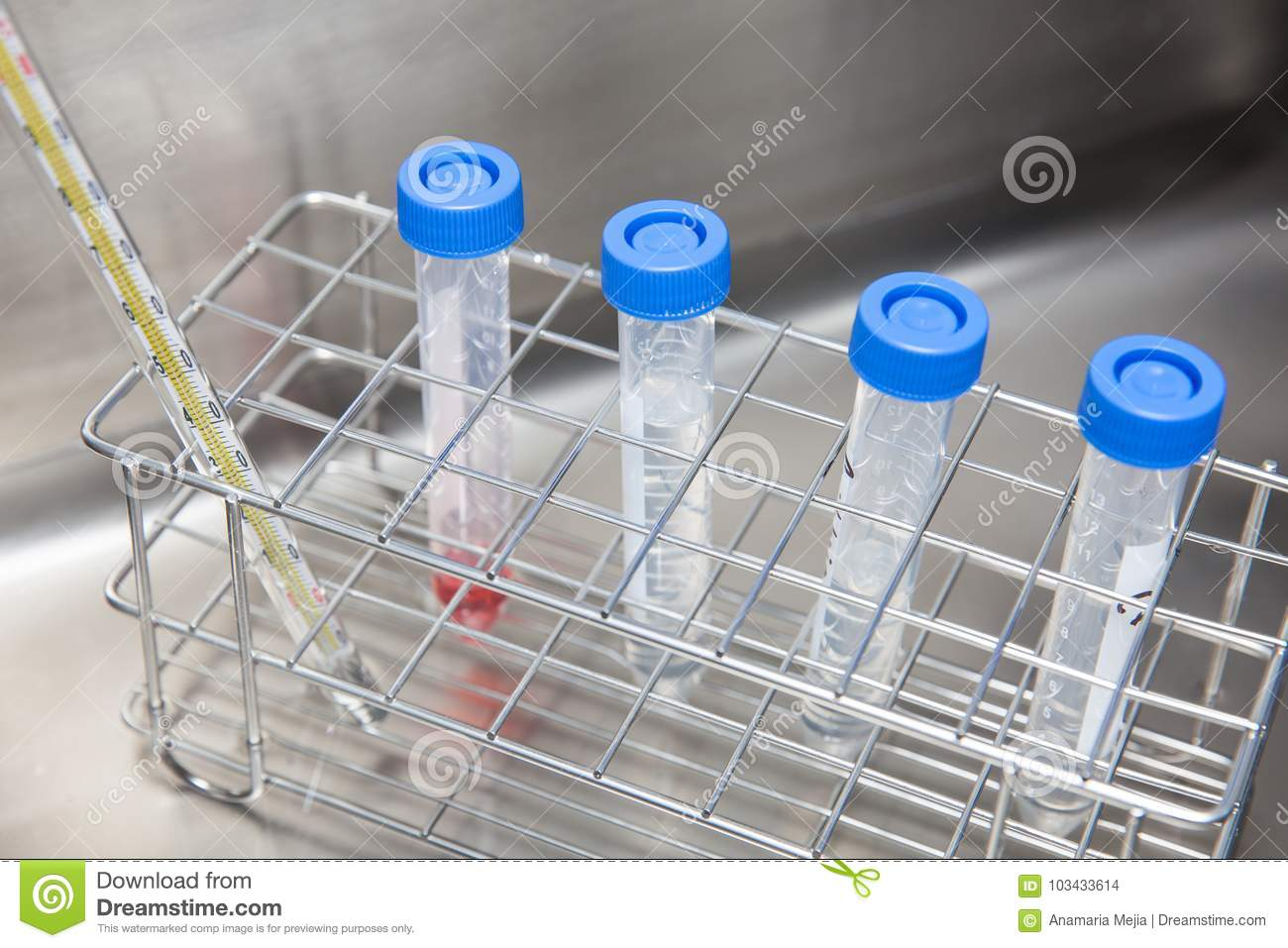 Falcon Tubes And Rack In A Hot Water Bath Stock Photo - Image of ...