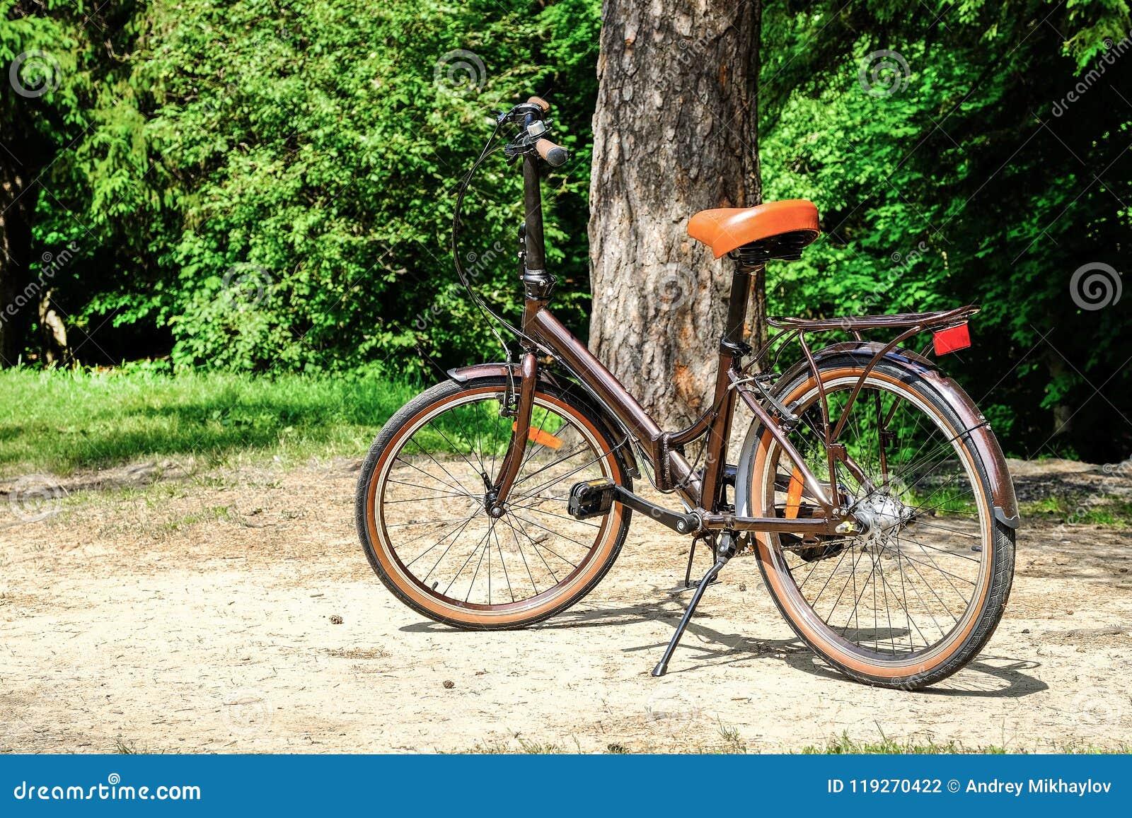 Falcowanie kobiet ` s chodzący rower
