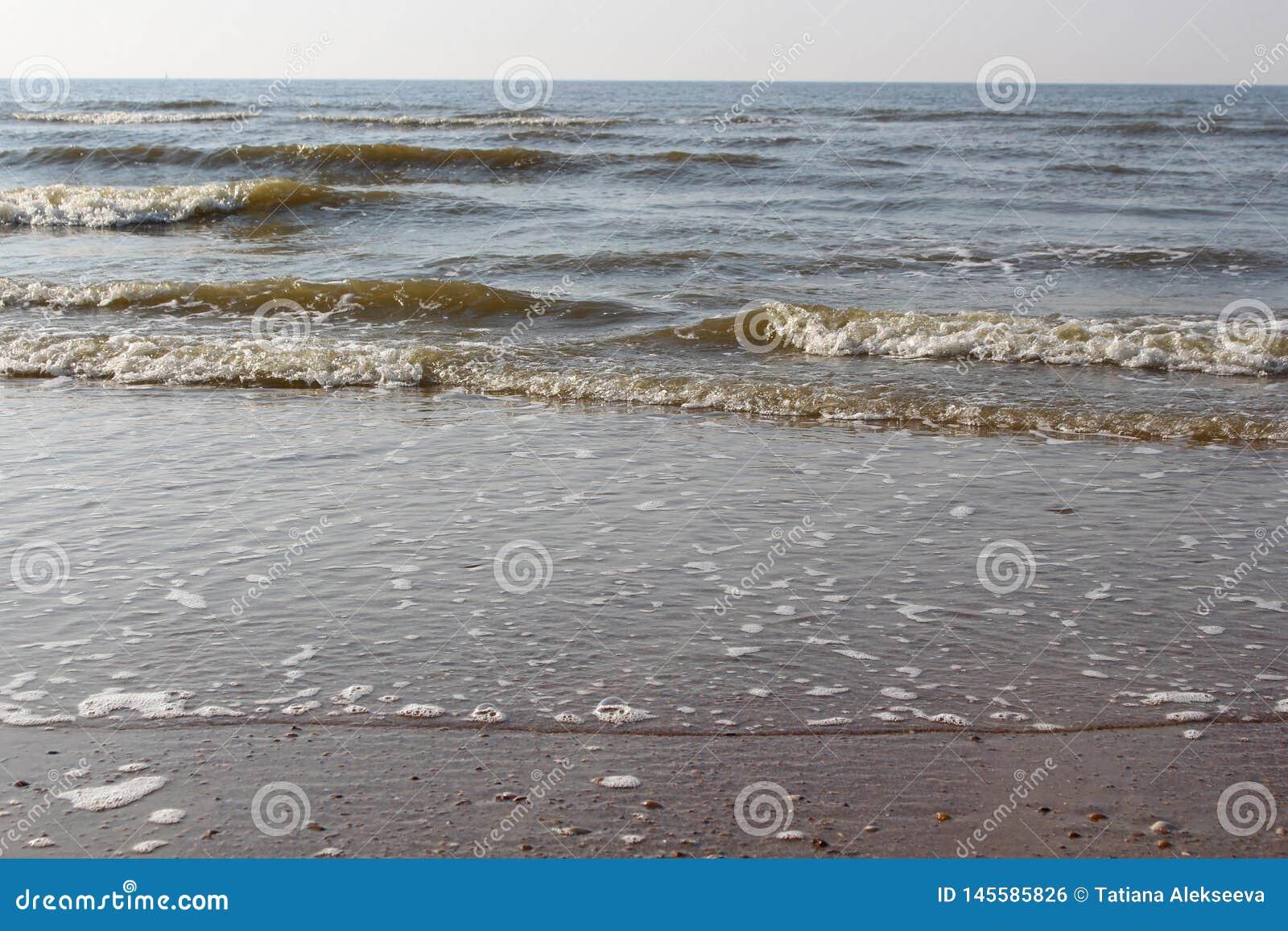Fale morze północne przy zmierzchem Mokry piasek i jasny wieczór niebo Plaża morze, Ostend, Belgia
