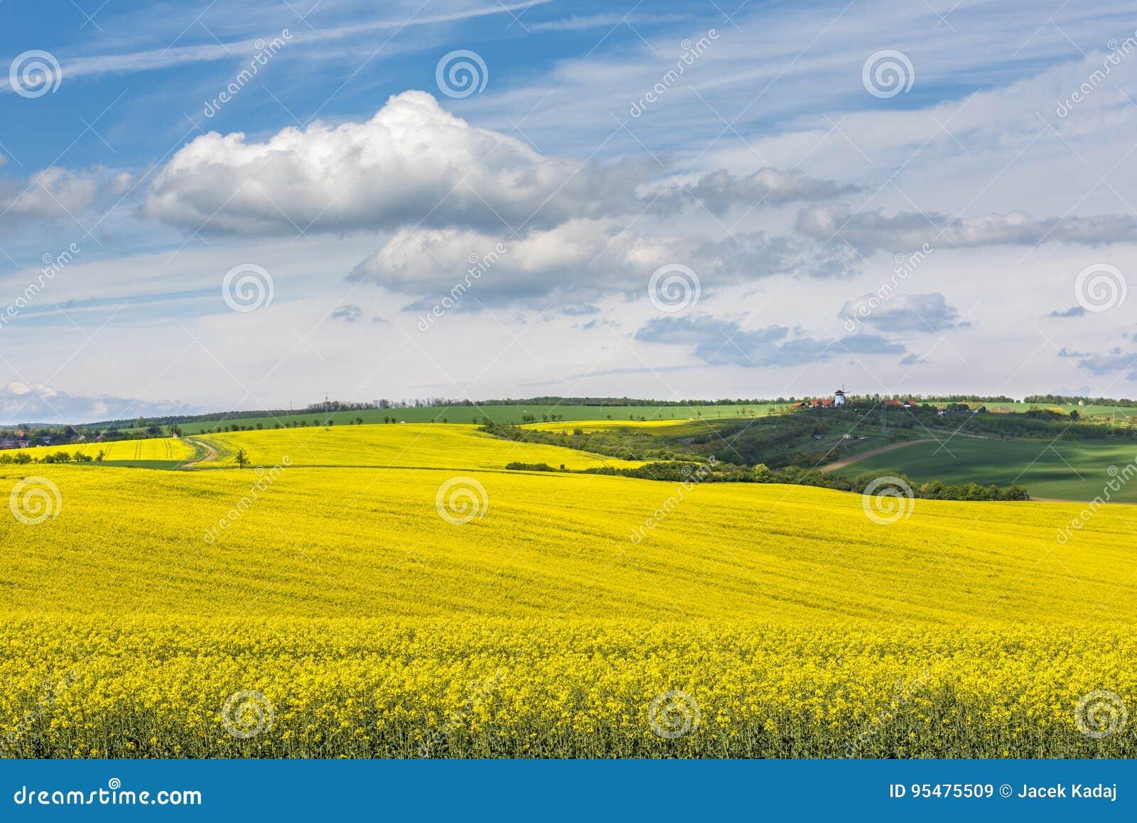 Falisty łąki wiosny krajobraz w Południowym Moravia