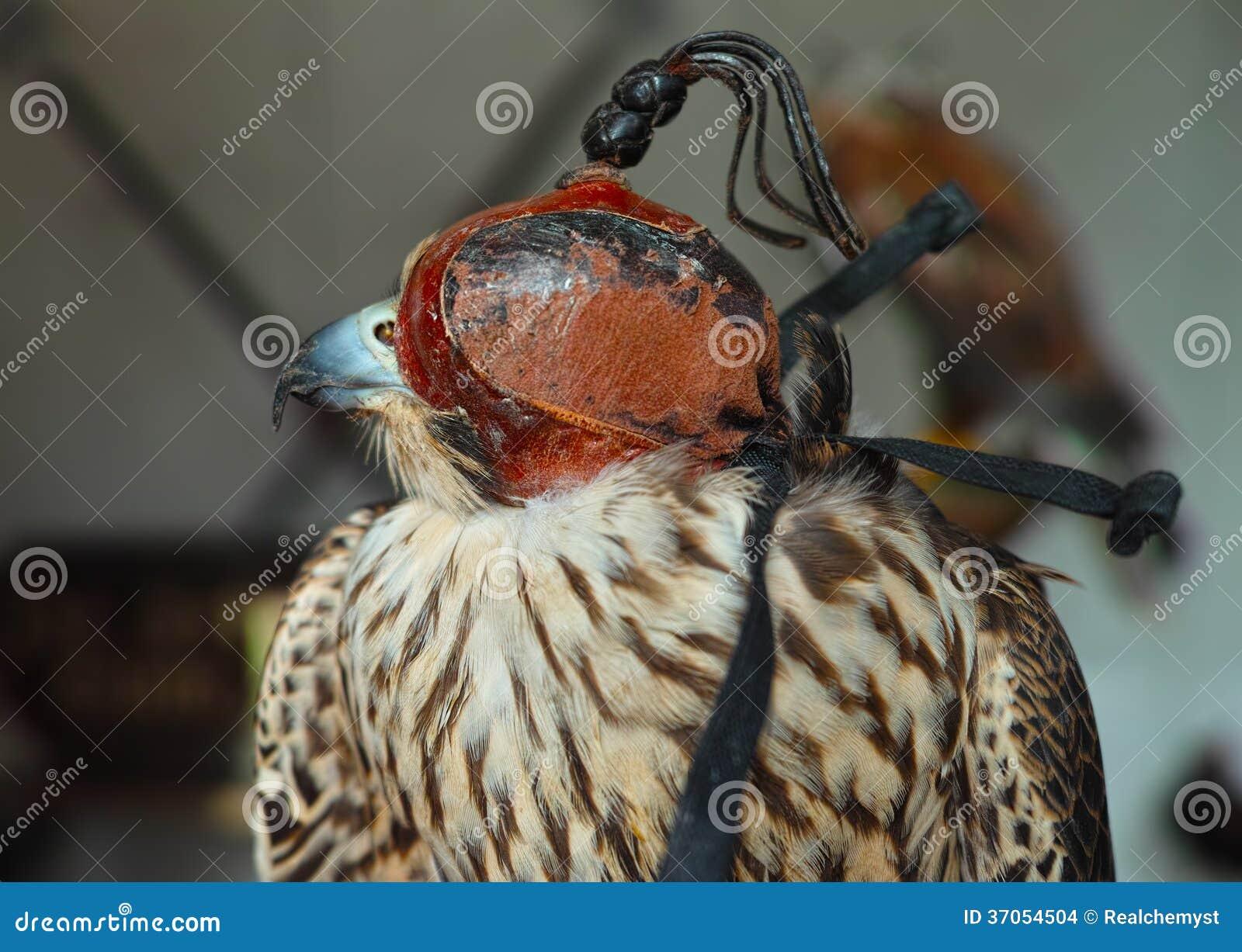 Falk med maskeringen