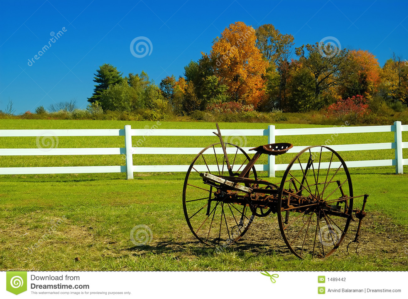 Fall in the air stock photography image 1489442