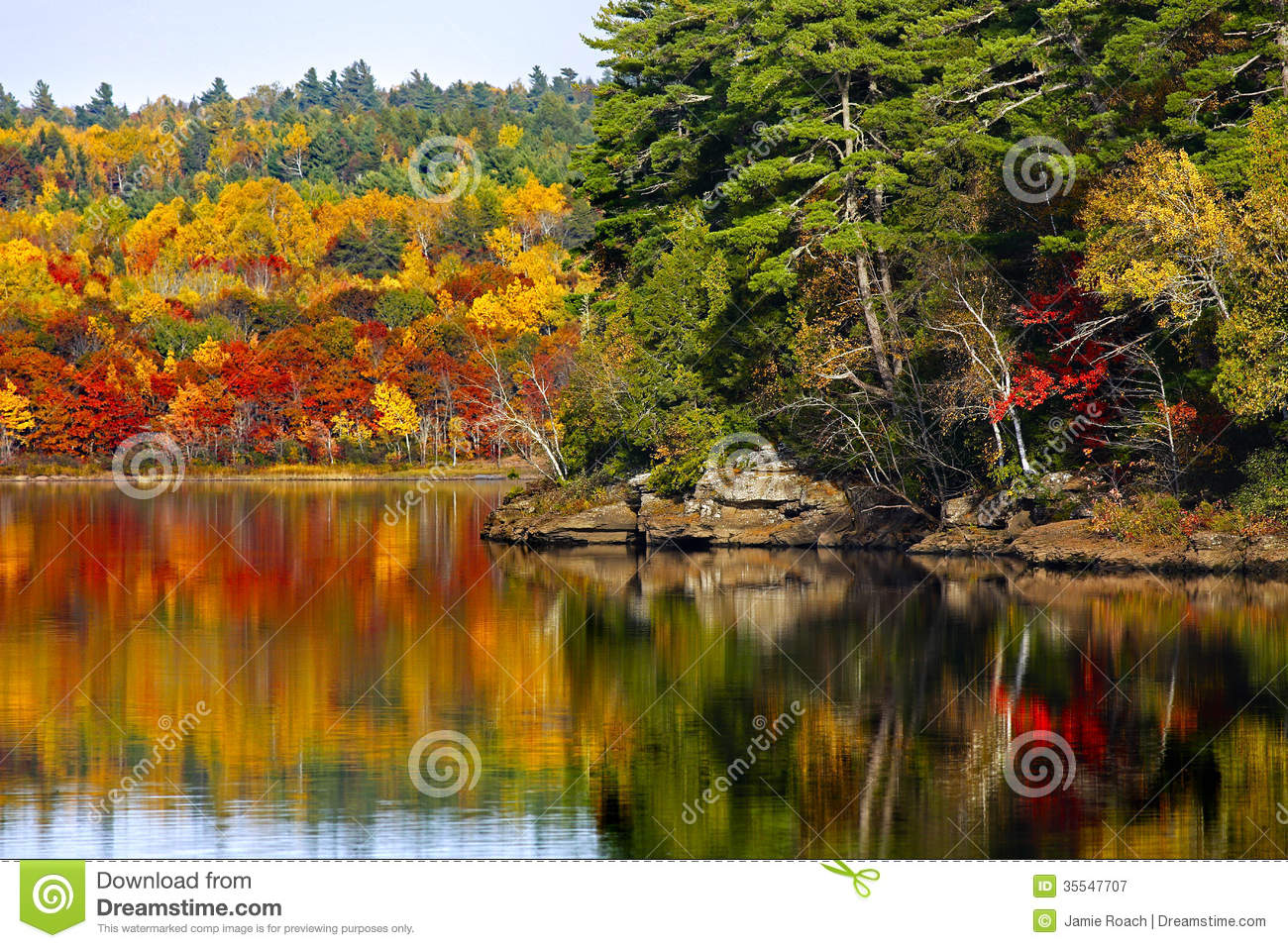 Fall Autumn Colors Water Reflection Royalty Free Stock