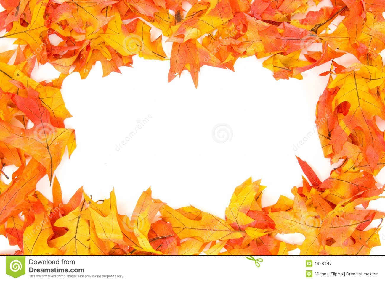 Fall - Autumn leaf border stock image. Image of border ...