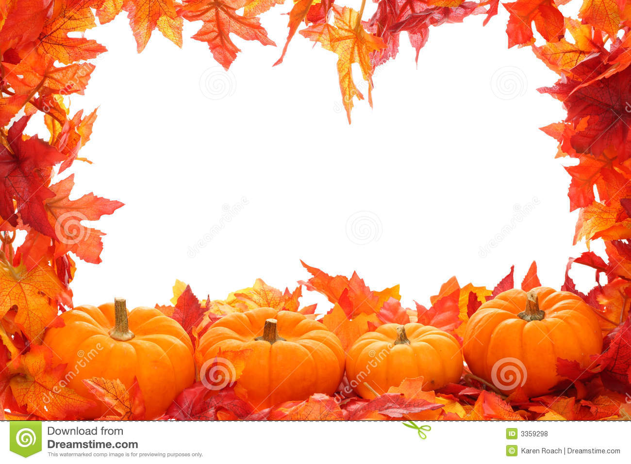pumpkins with fall leaves stock photo image of festive 1241578