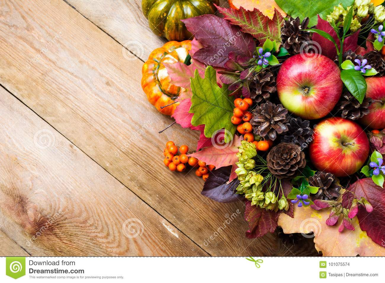 Fall background with blue flowers and colorful leaves copy spac download fall background with blue flowers and colorful leaves copy spac stock photo image izmirmasajfo