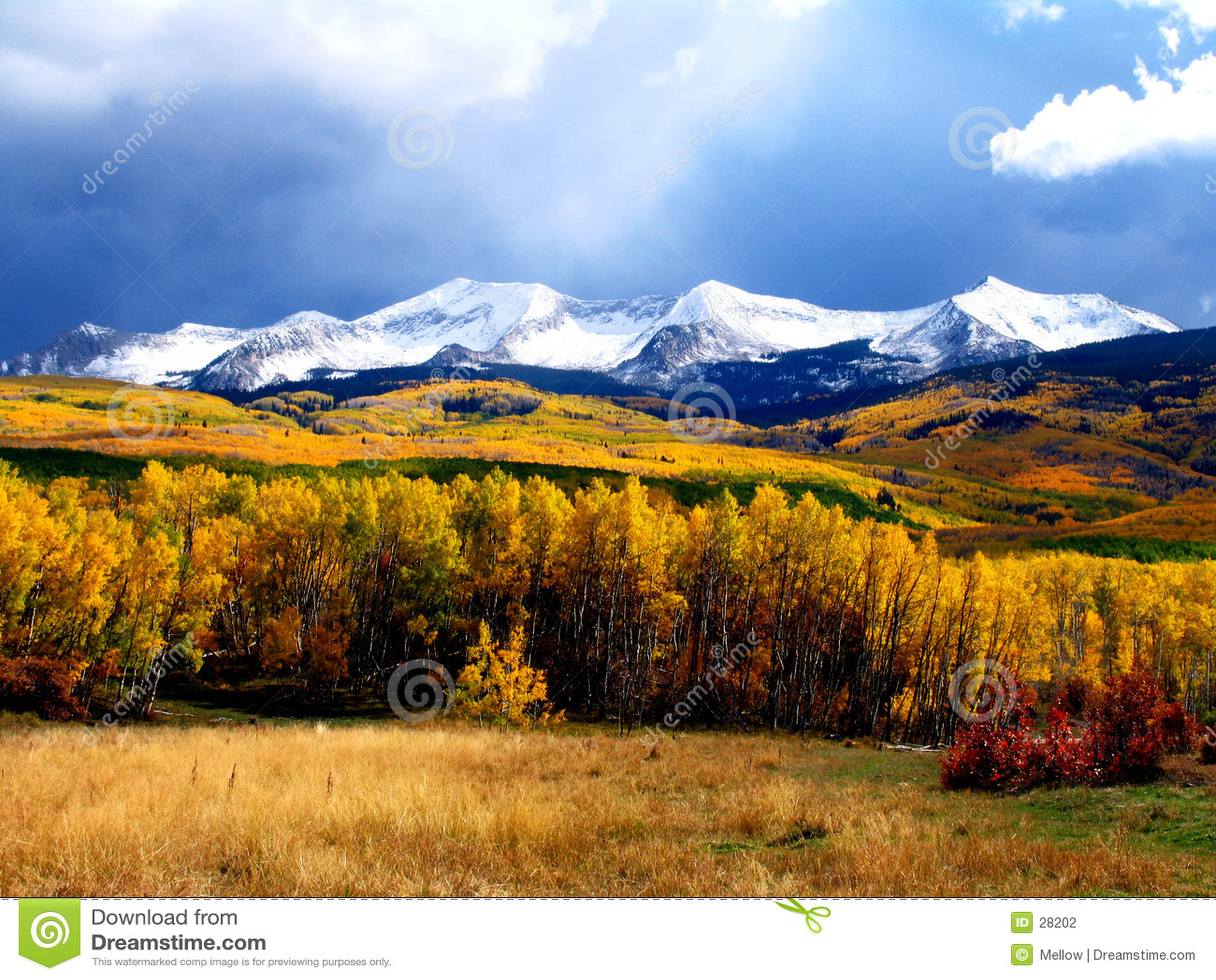 Fall-Berge