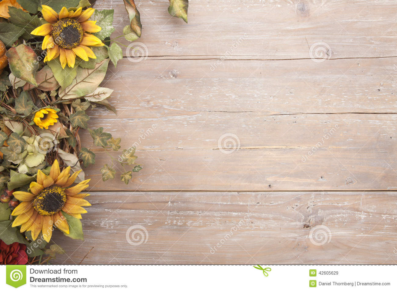 fall border with sunflowers stock photo