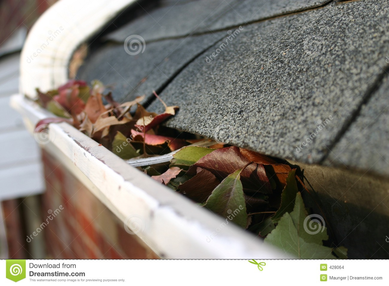 Fall Cleanup Leaves In Gutter 5 Stock Images Image 428064