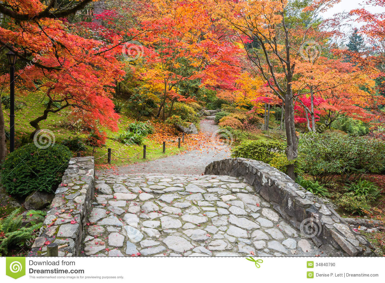 Fall color landscape with stone bridge and walking path stock photo image 34840790 - Gardening in fall ...
