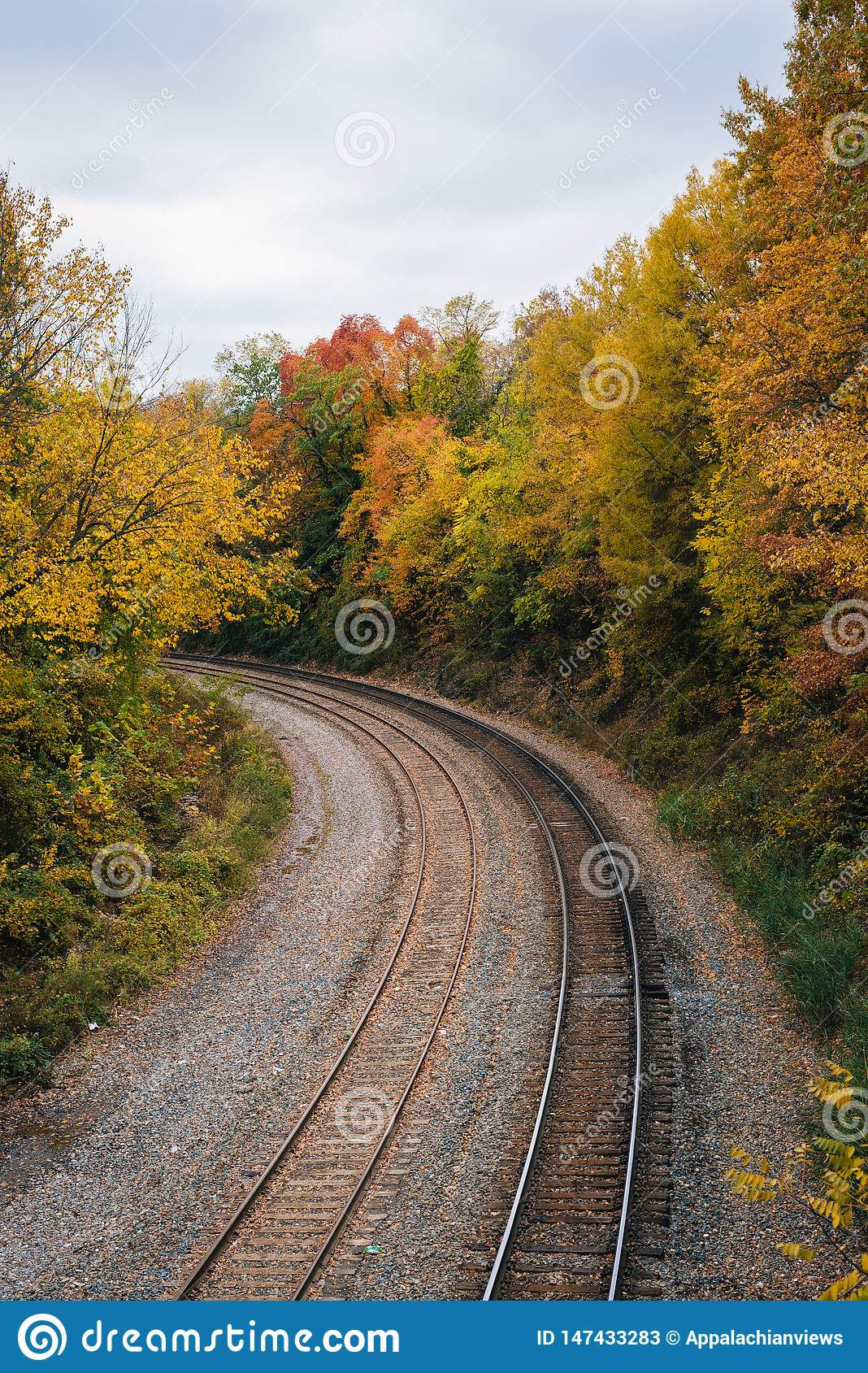 Fall color and railroad tracks in Remington, Baltimore, Maryland