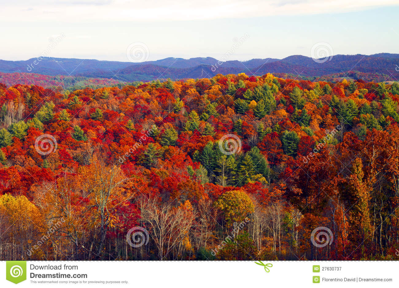 ... in the appalachian mountains in north carolina showing fall colors