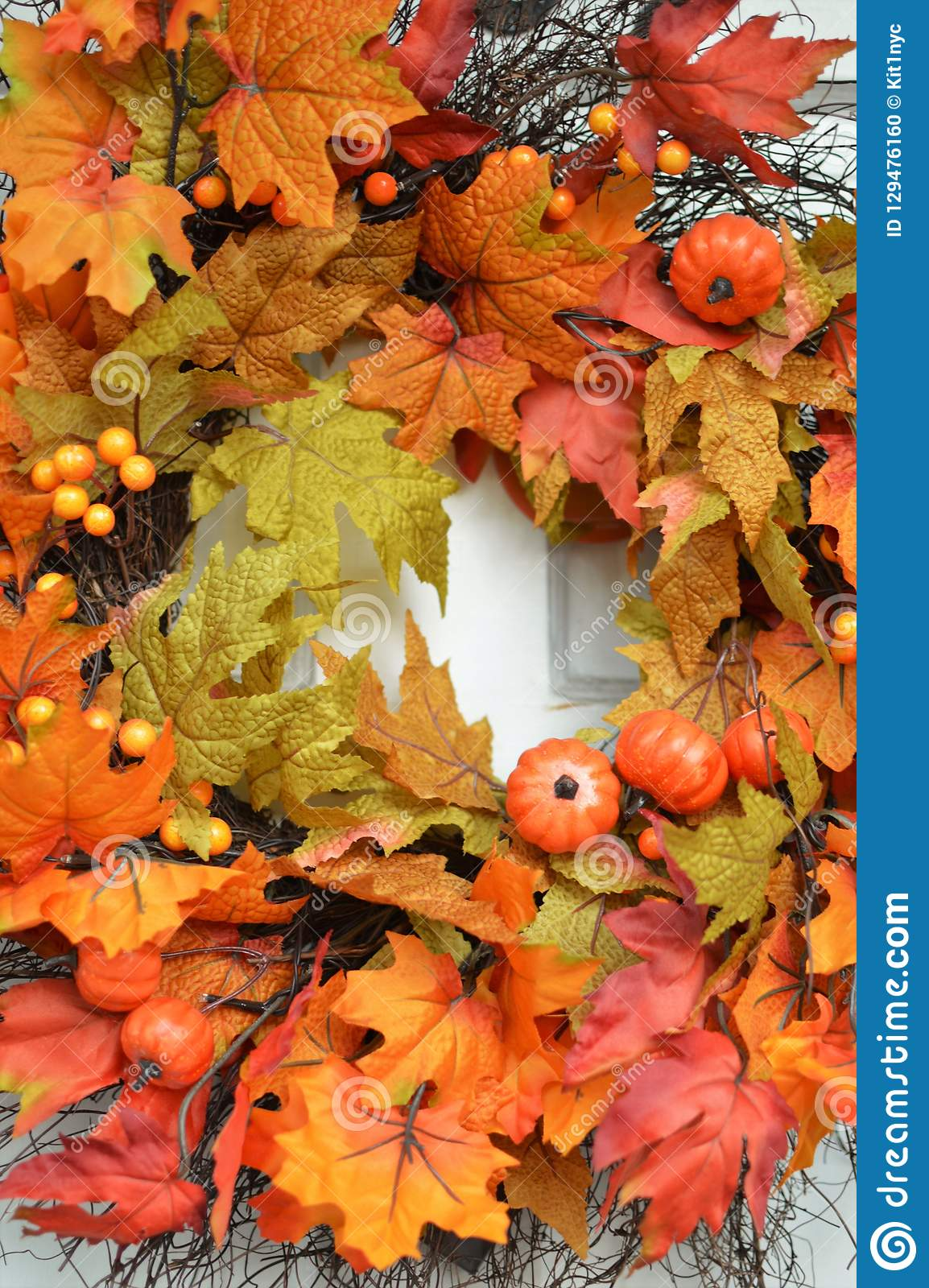 Fall Colors Autumn Leaves Background Thanksgiving Season