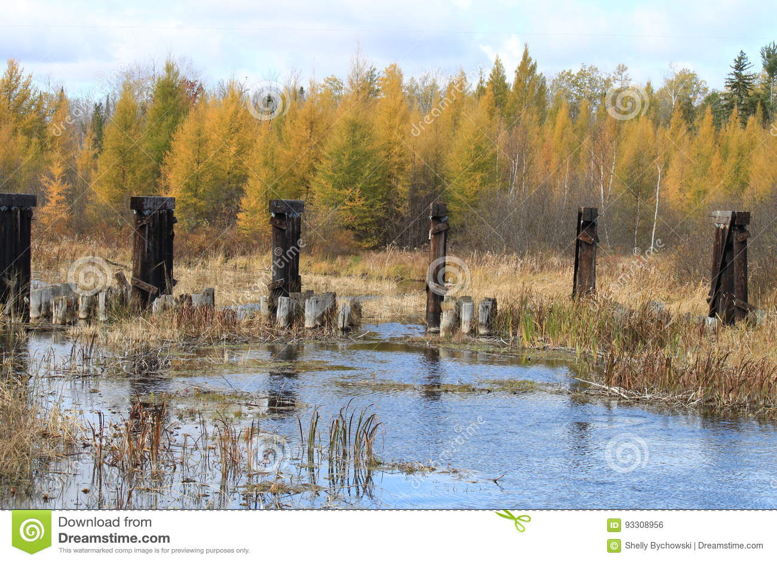 Abandoned Remnants Of Bridge Amongst Fall Colors ...