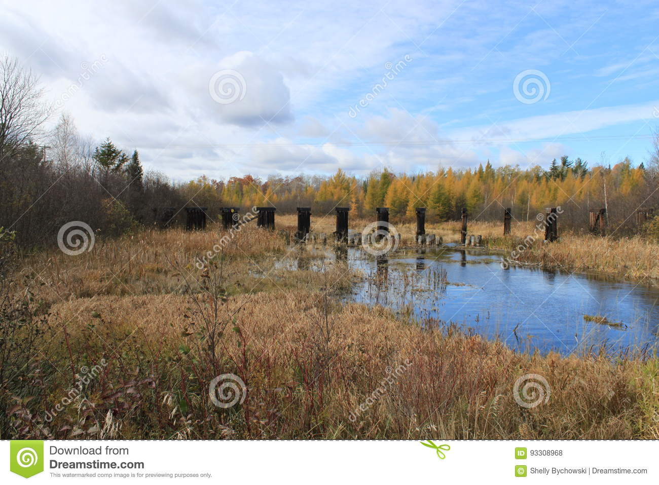 Abandoned bridge posts in the distance, and fall colors are reflected in a river in Hayward, Wisconsin