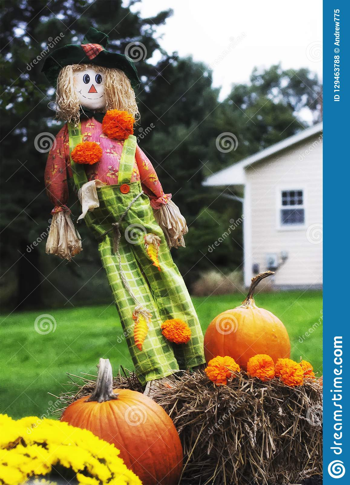 Fall Decorations Outside Stock Photo Image Of Autumn 129463788