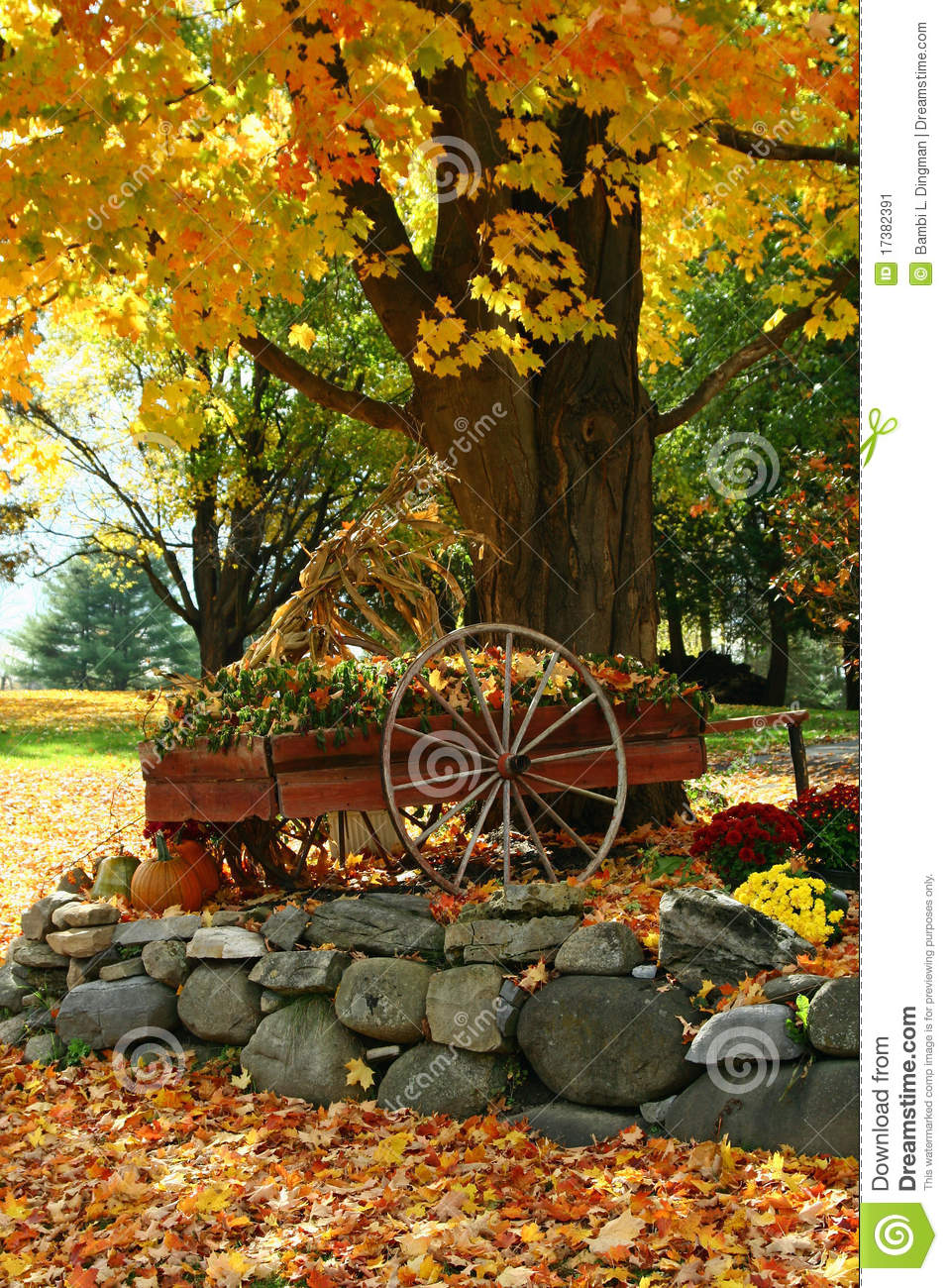 Fall Display Stock Image Image 17382391