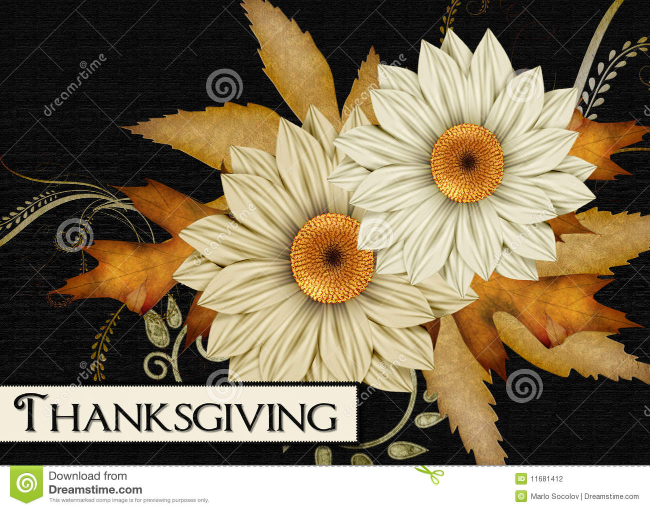 Fall Flowers Thanksgiving Card Stock Photography Image