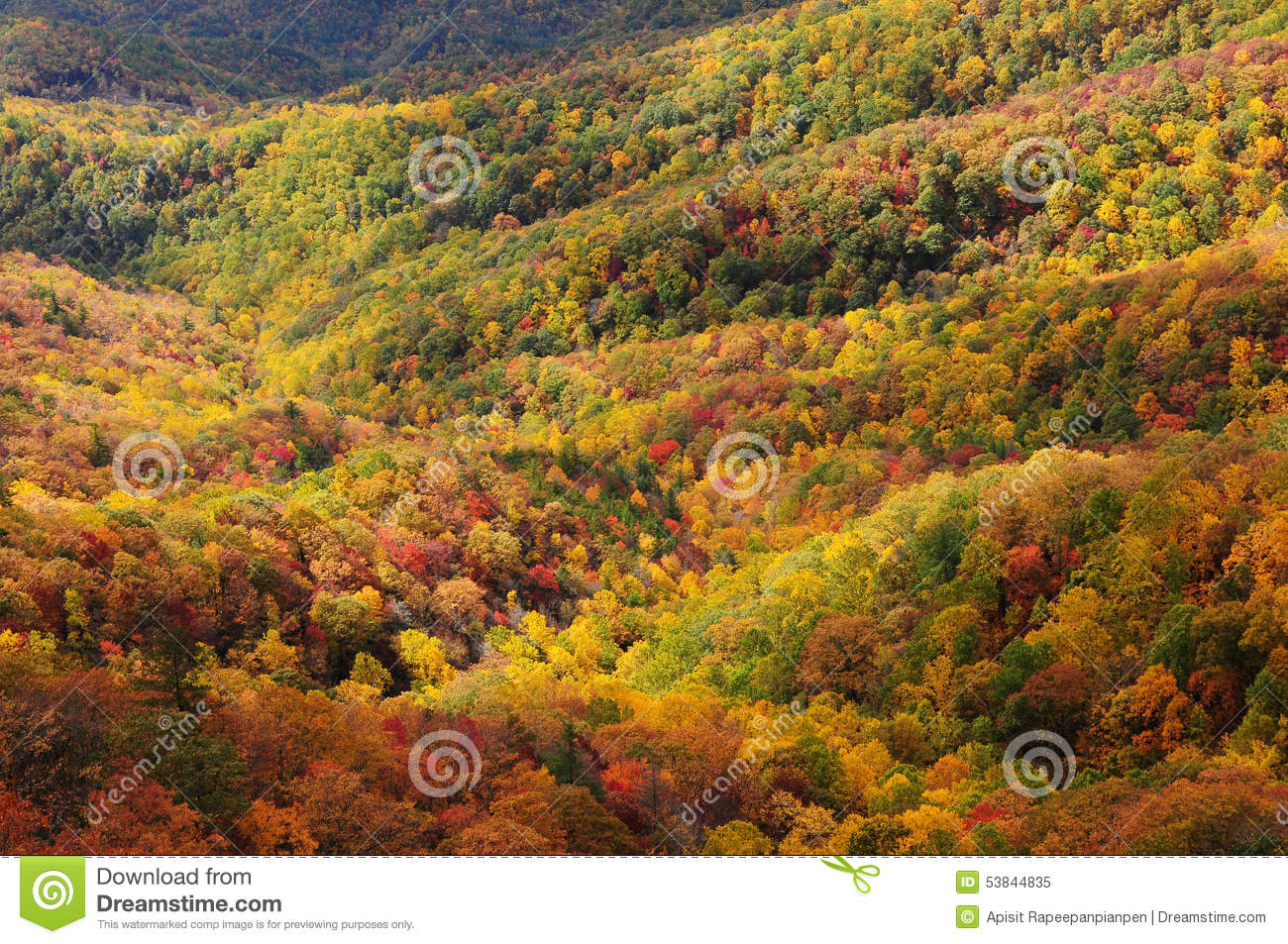 fall foliage blowing rock overlook blue ridge parkway stock image