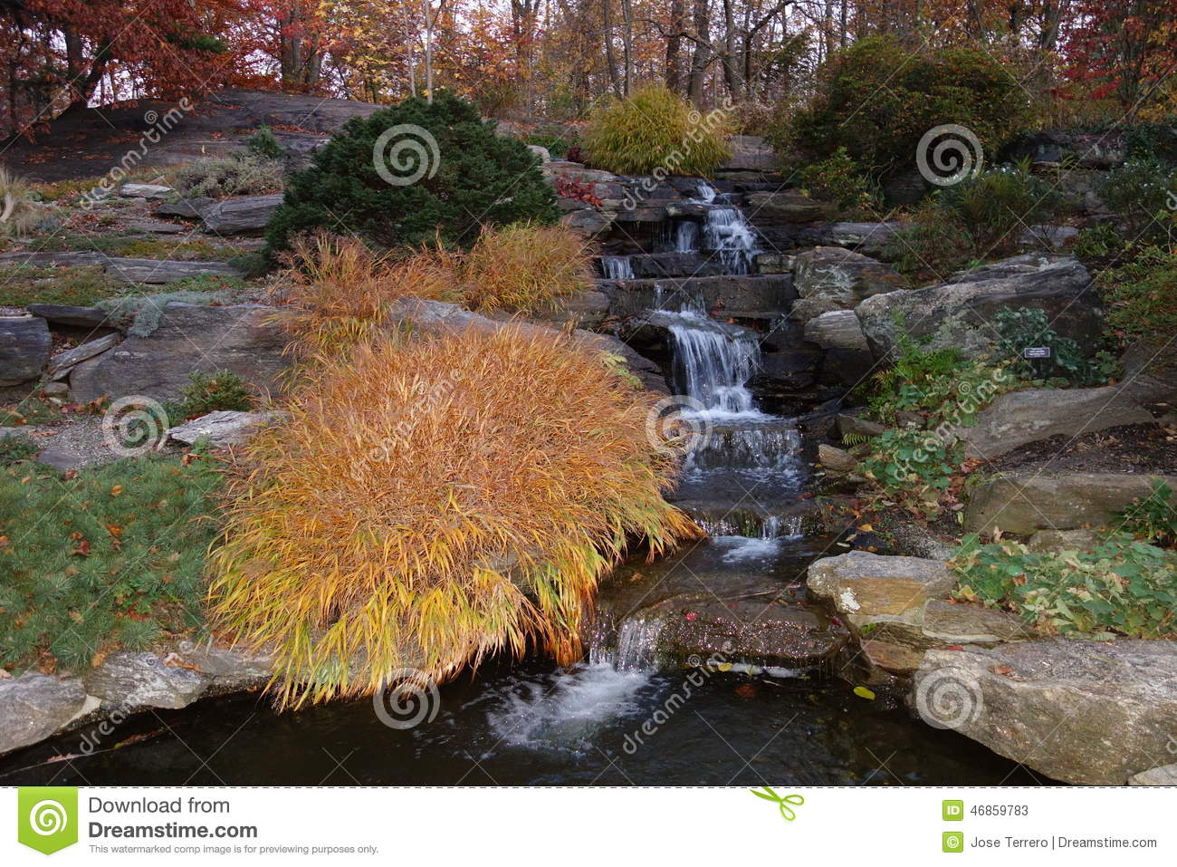 Fall Foliage At Dusk In The New York Botanical Garden Stock Photo ...