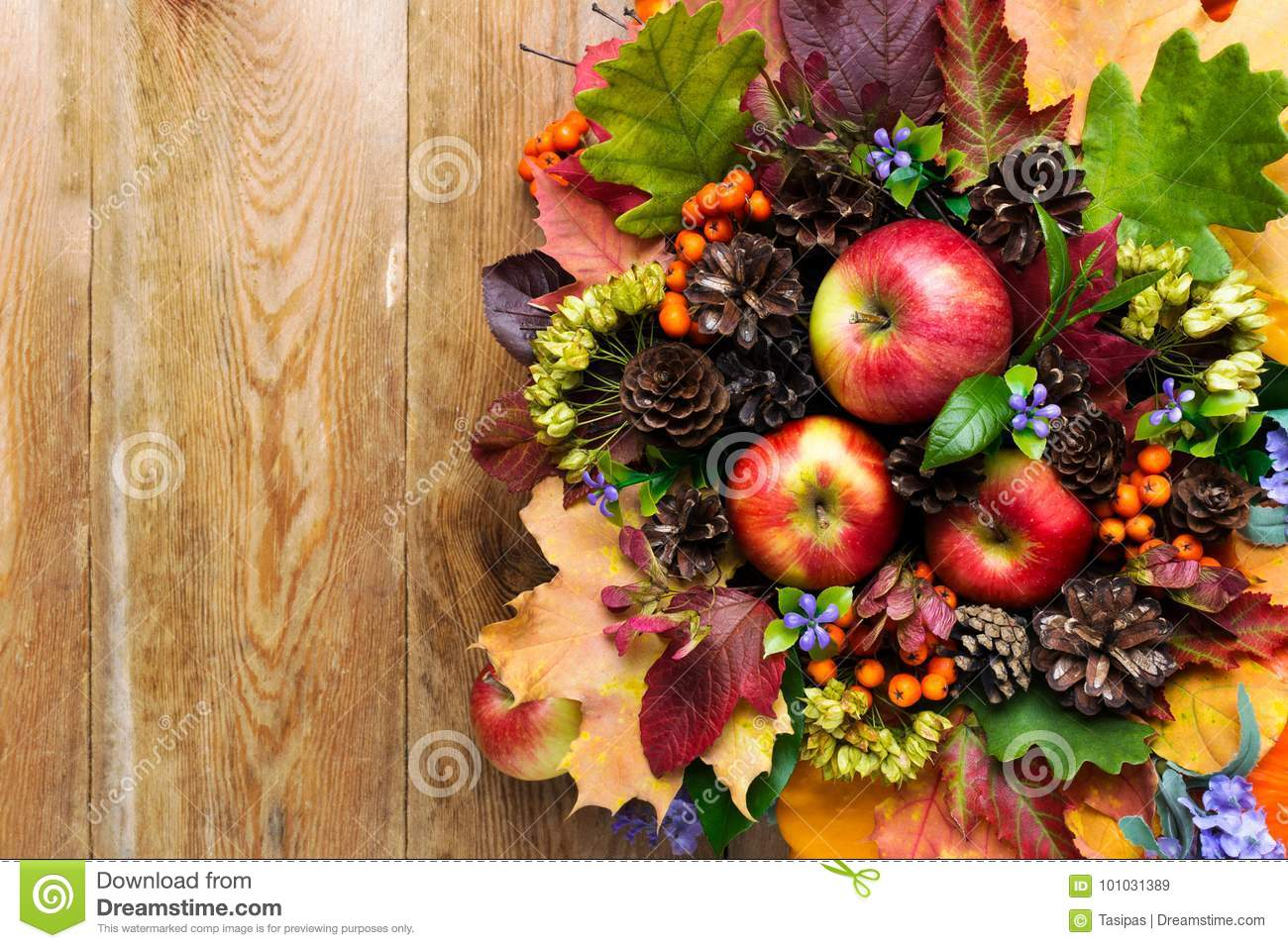 Fall Greeting With Apples Blue Flowers And Green Leaves Stock Image