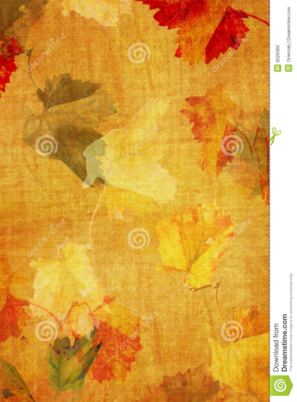 Fall Grunge color texture