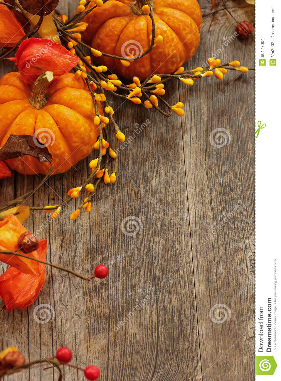 Fall And Halloween Background Stock Photo Image Of Morning
