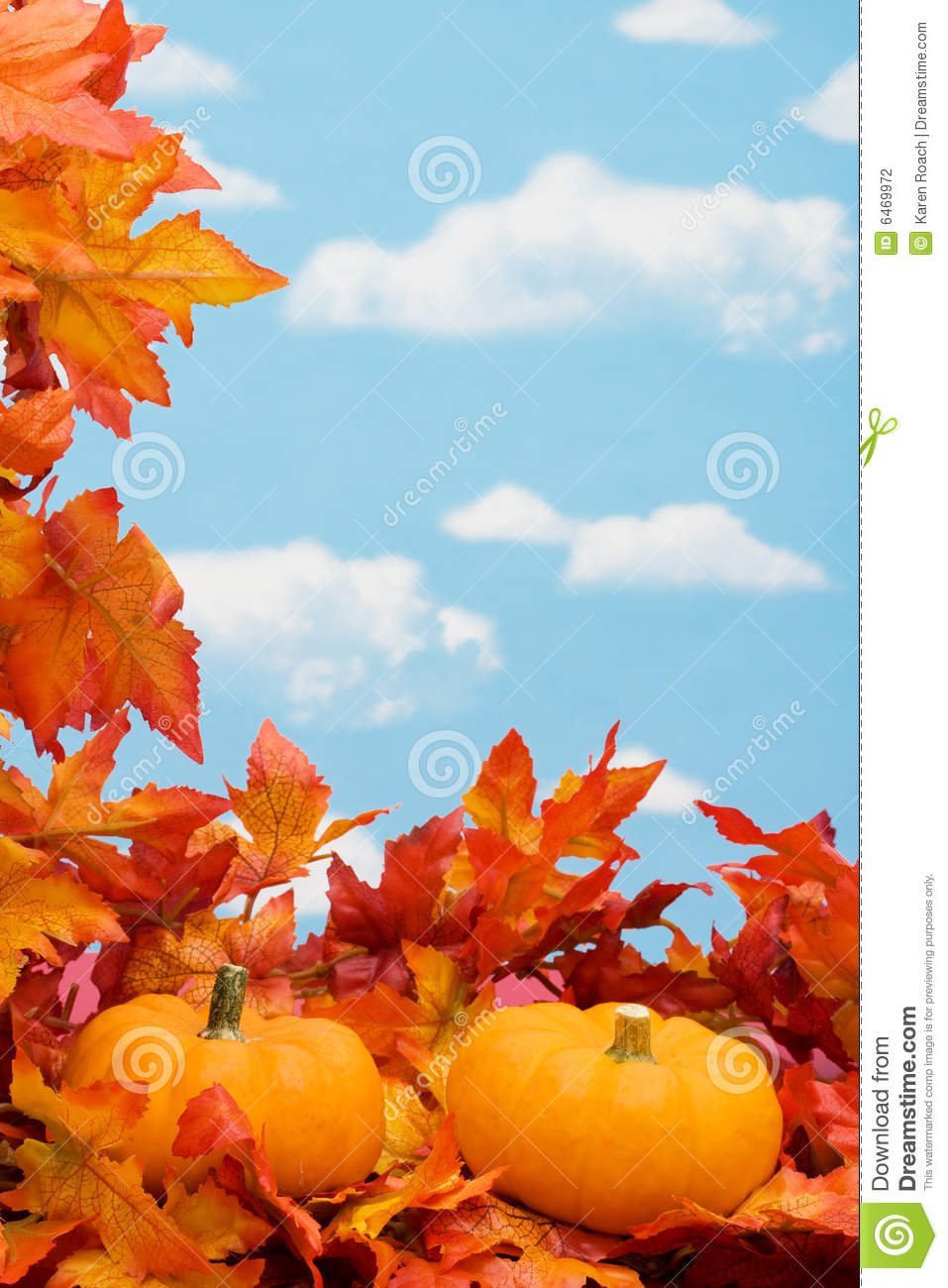 Fall Harvest Border Stock Photography Image 6469972