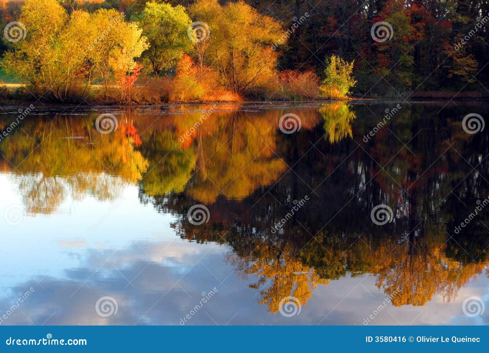 Fall lake reflection scene trees
