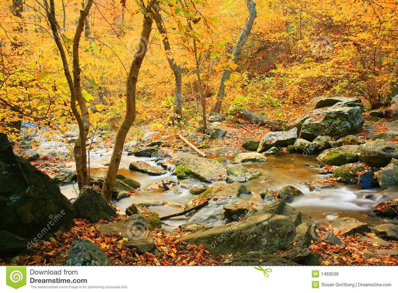 Fall Landscape Royalty Free Stock Image Image