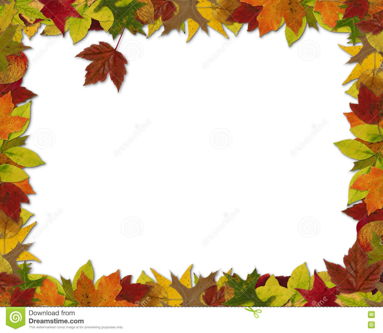 Fall Leaf Frame