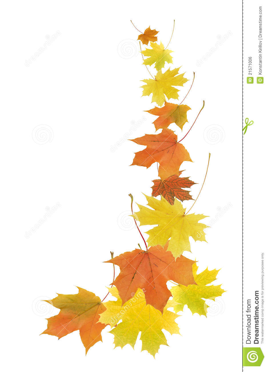 ... border made from color falling maple leaves. Fall Leaf Page Border