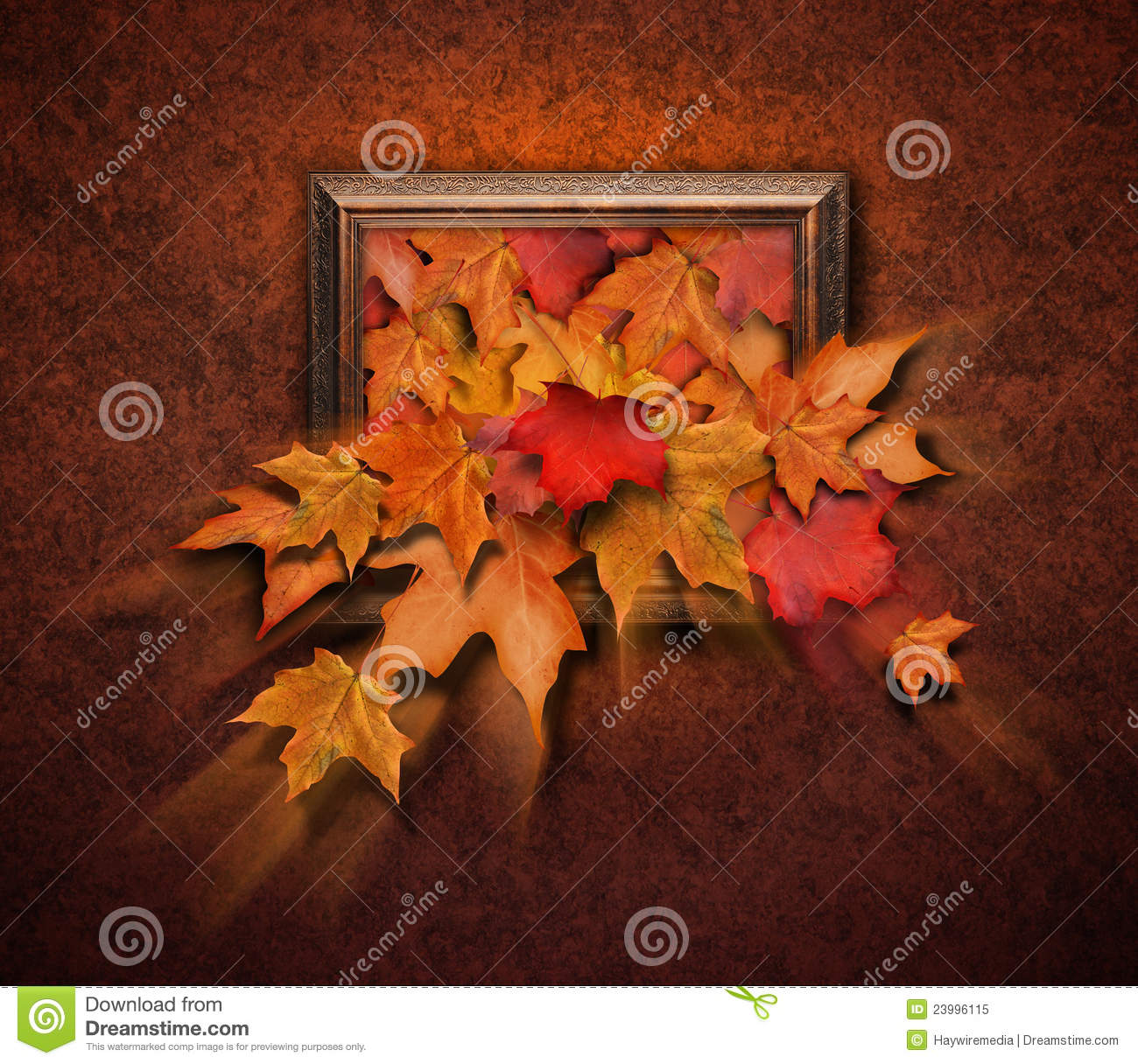 Fall Leaves Coming Out Of Antique Frame Stock Image