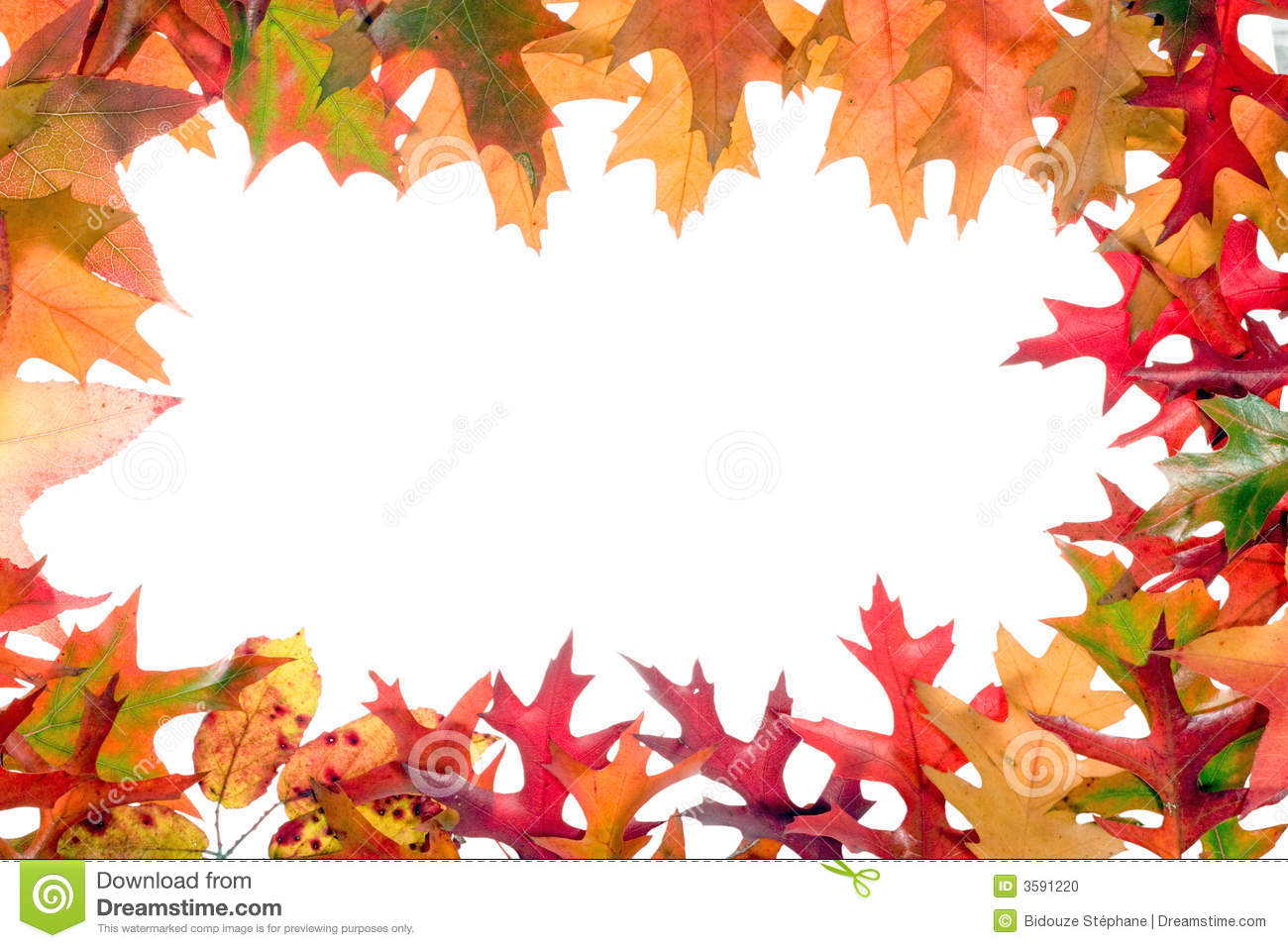 Fall Leaves Frame 3 Stock Photo Image 3591220