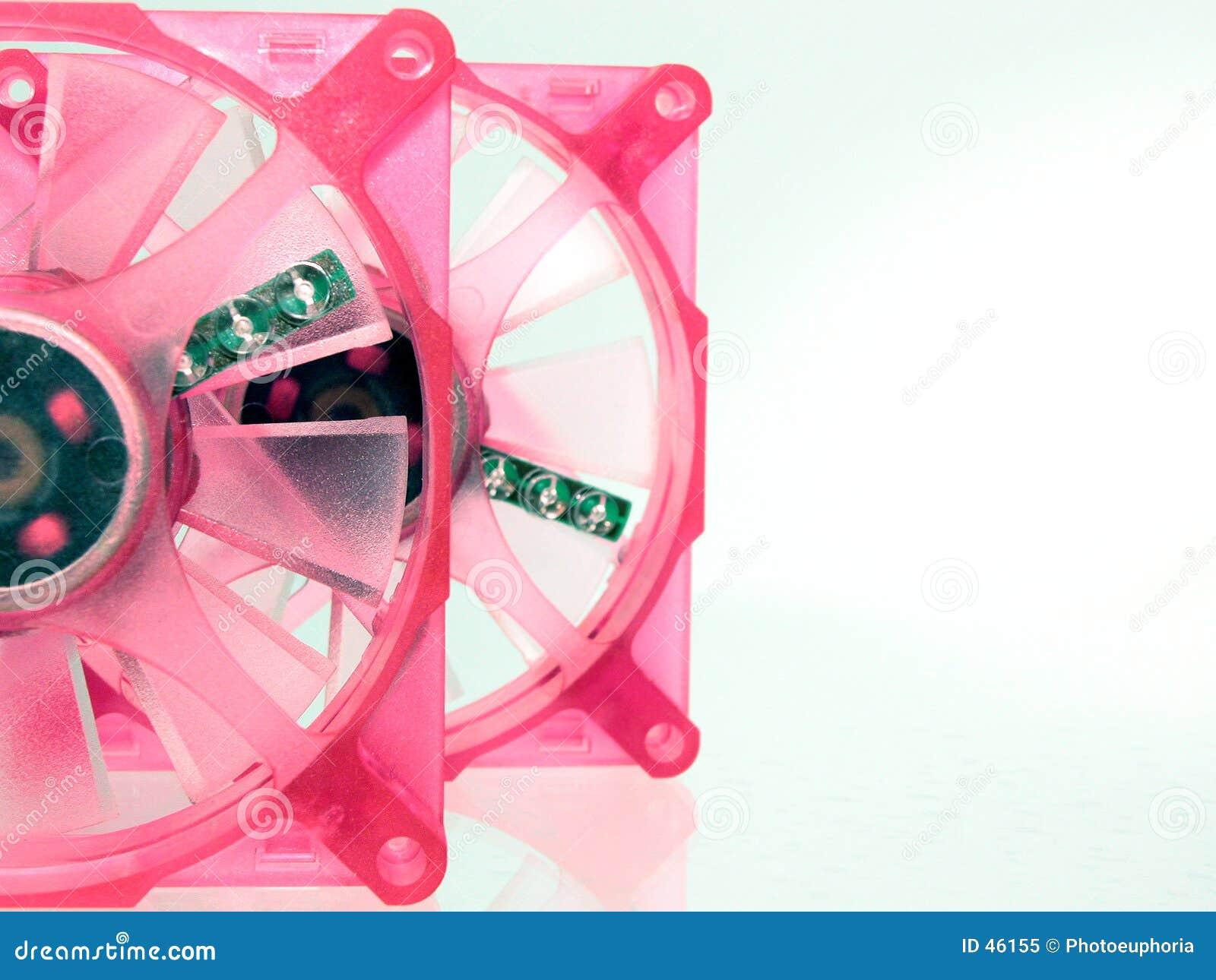 Fall lockert recht im Rosa auf