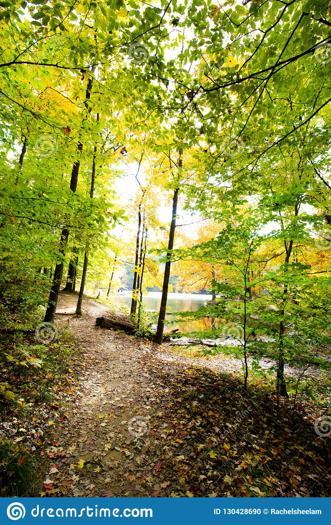 Fall on Ogle Lake, Brown County State Park, Indiana
