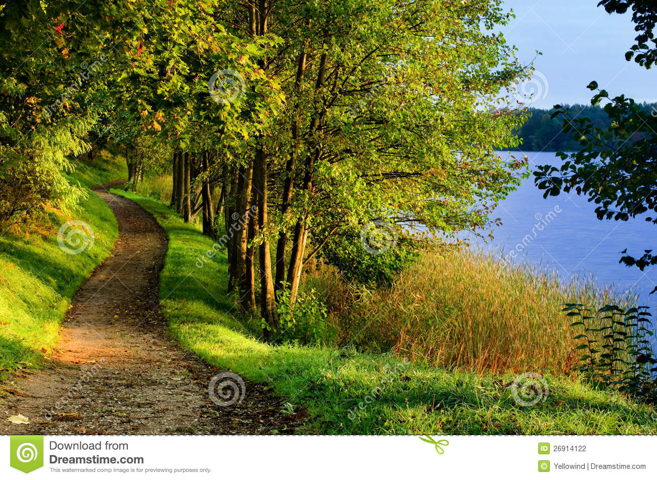 Fall path by lake