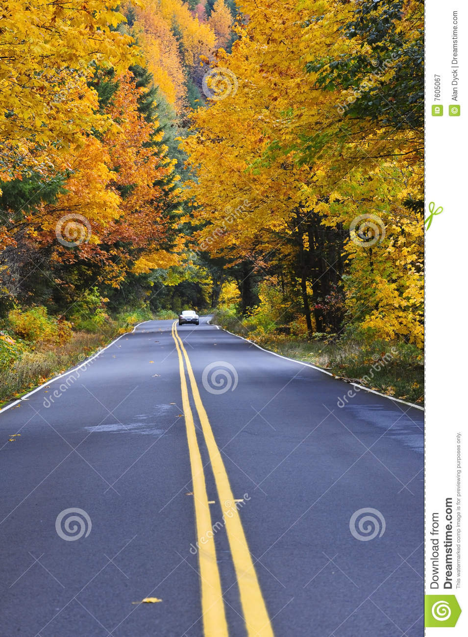 Time Road Id Roblox: Fall Road With Car In Distance Royalty Free Stock