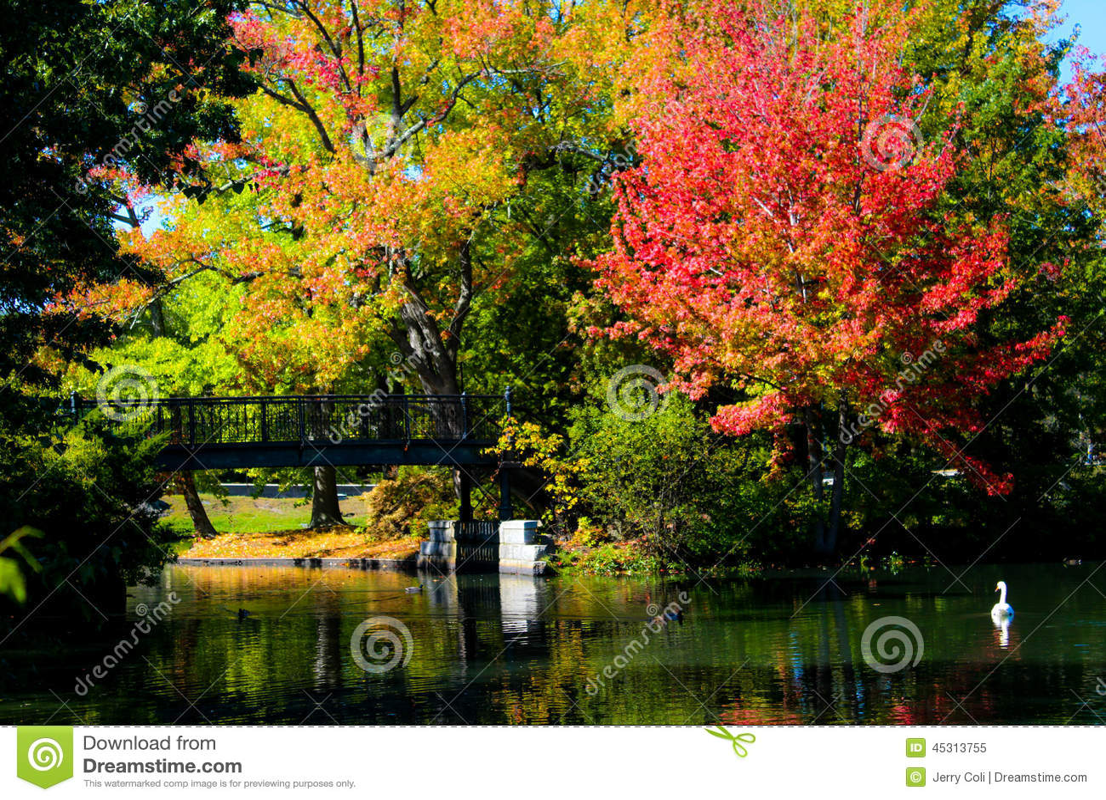 autumn leaves roger williams pdf