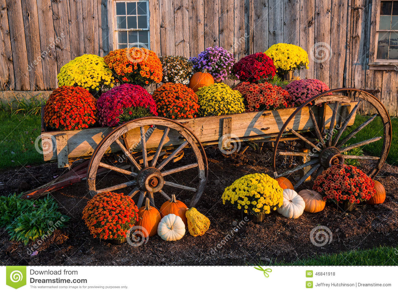 Fall Scene Stock Photo Image 46841918