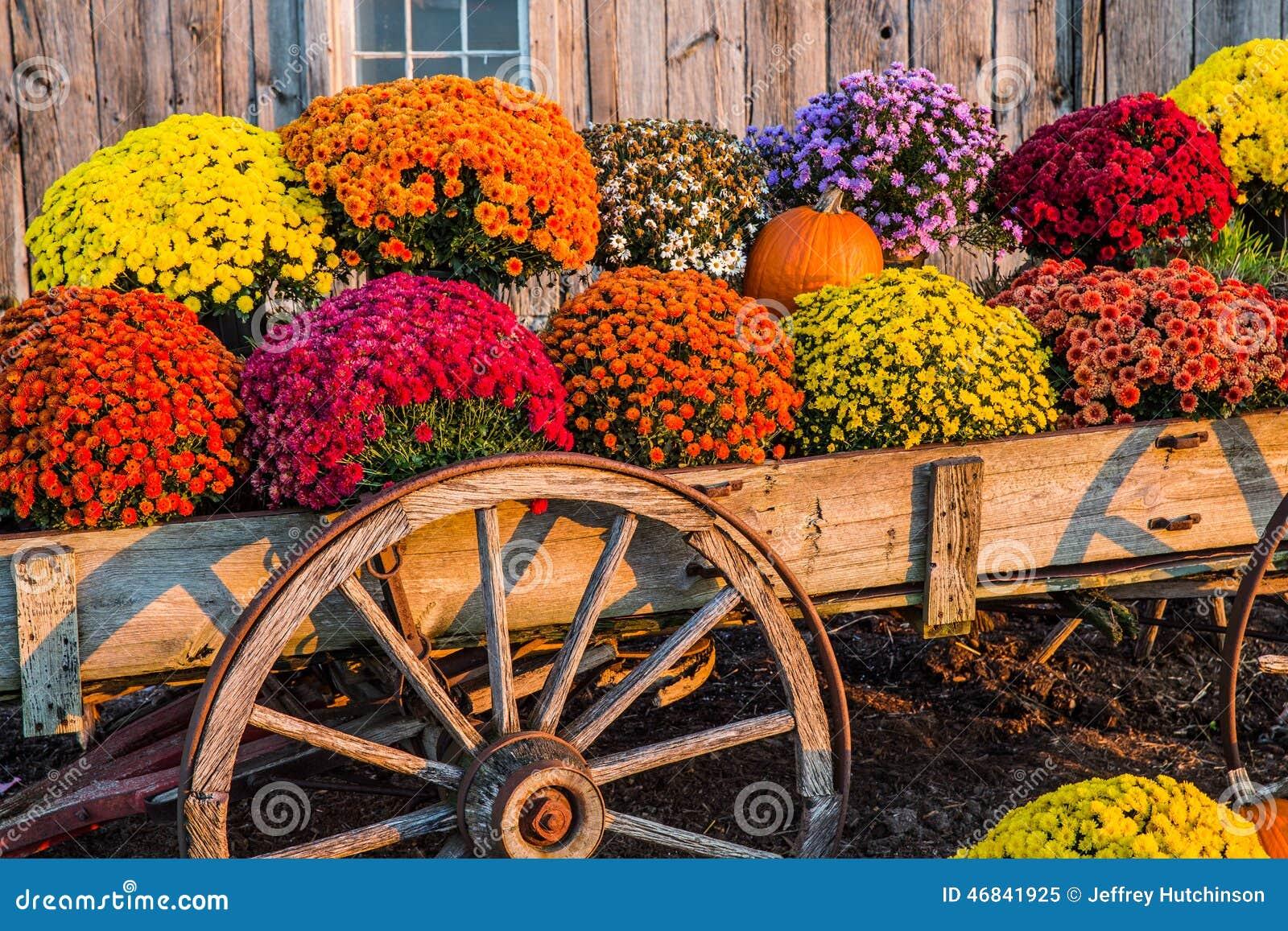 Fall Scene Stock Photo - Image: 46841925