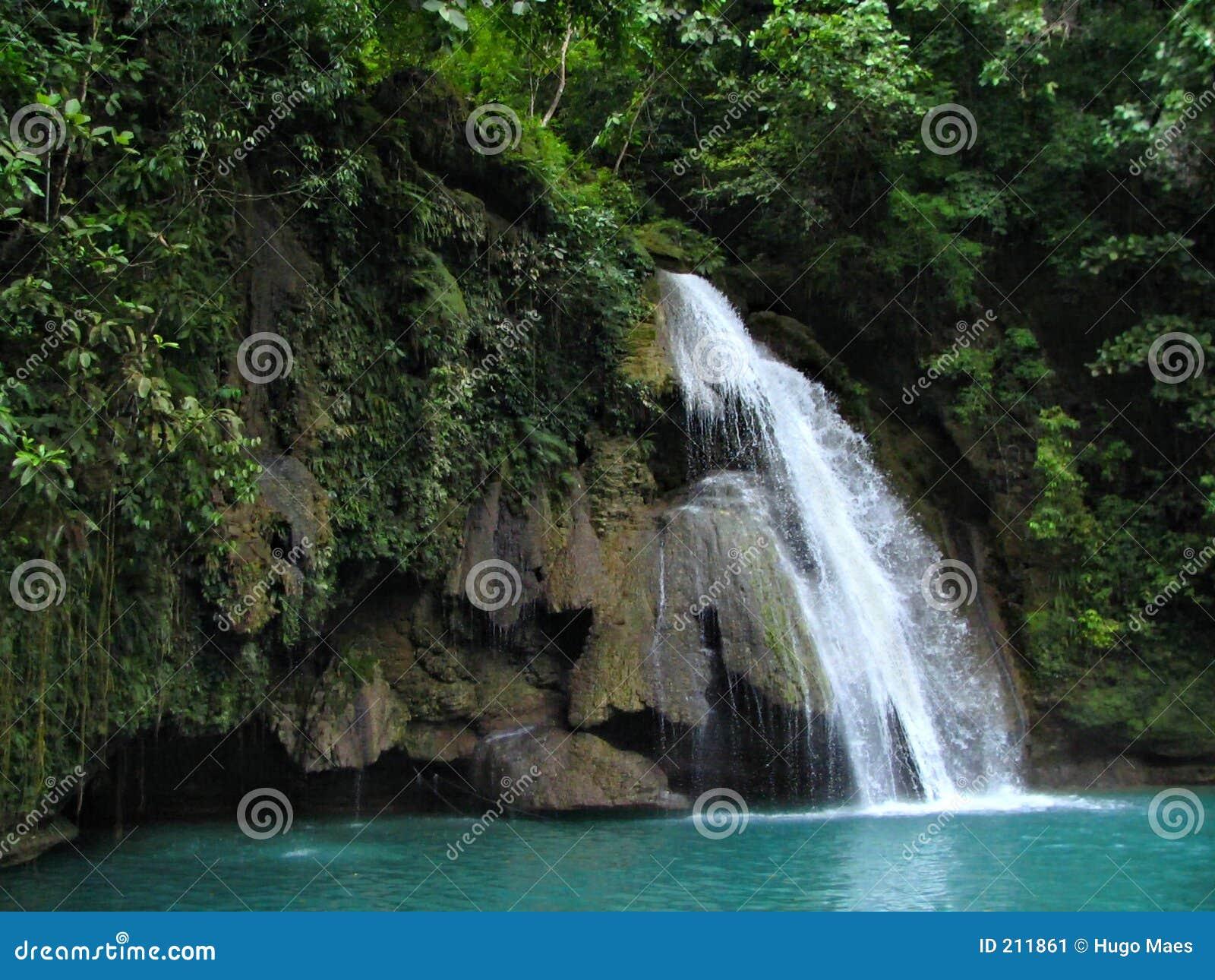 Faller tropiska kawasan philippines