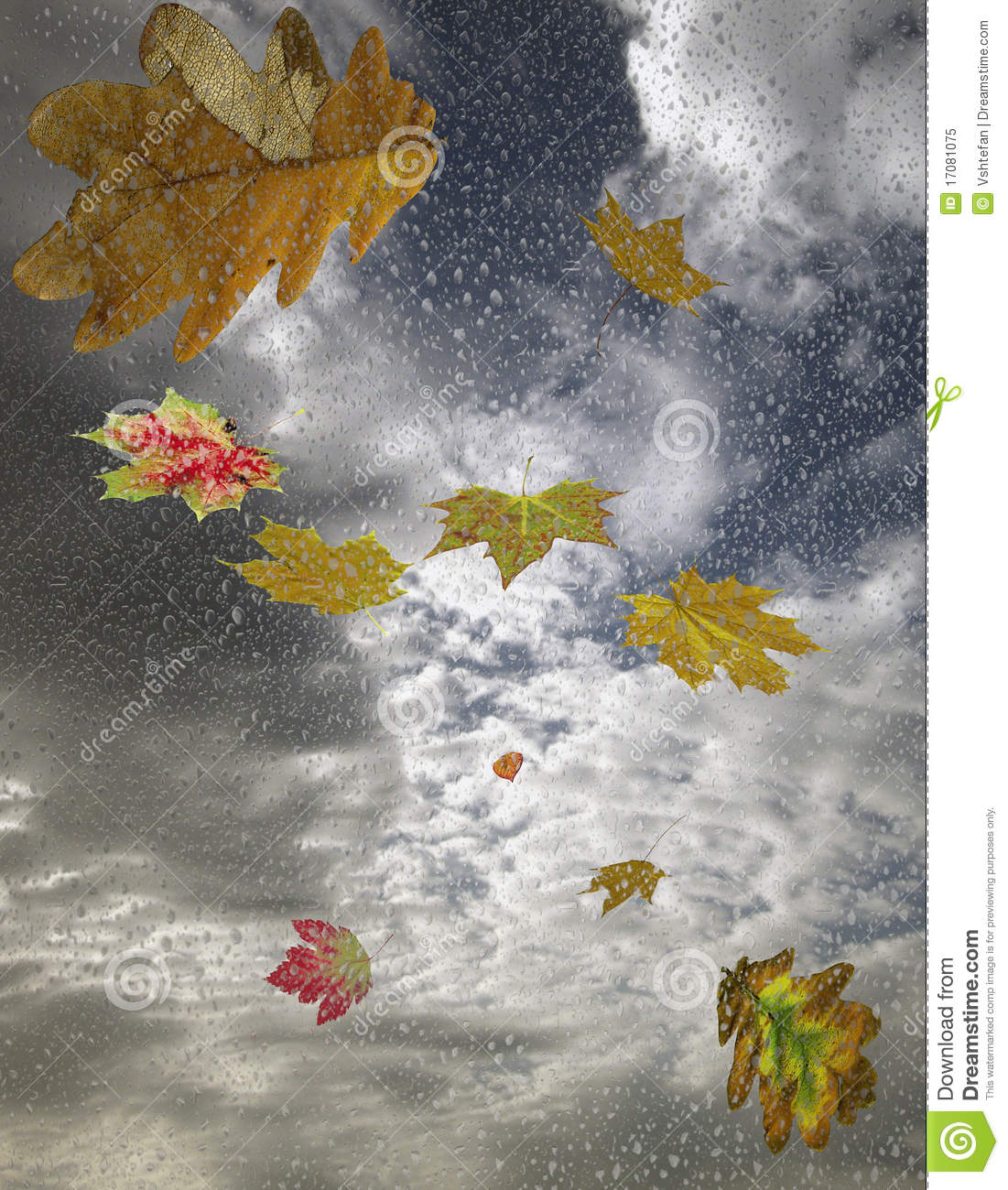 The Falling Autumn Leaves And Raindrops Royalty Free Stock ...