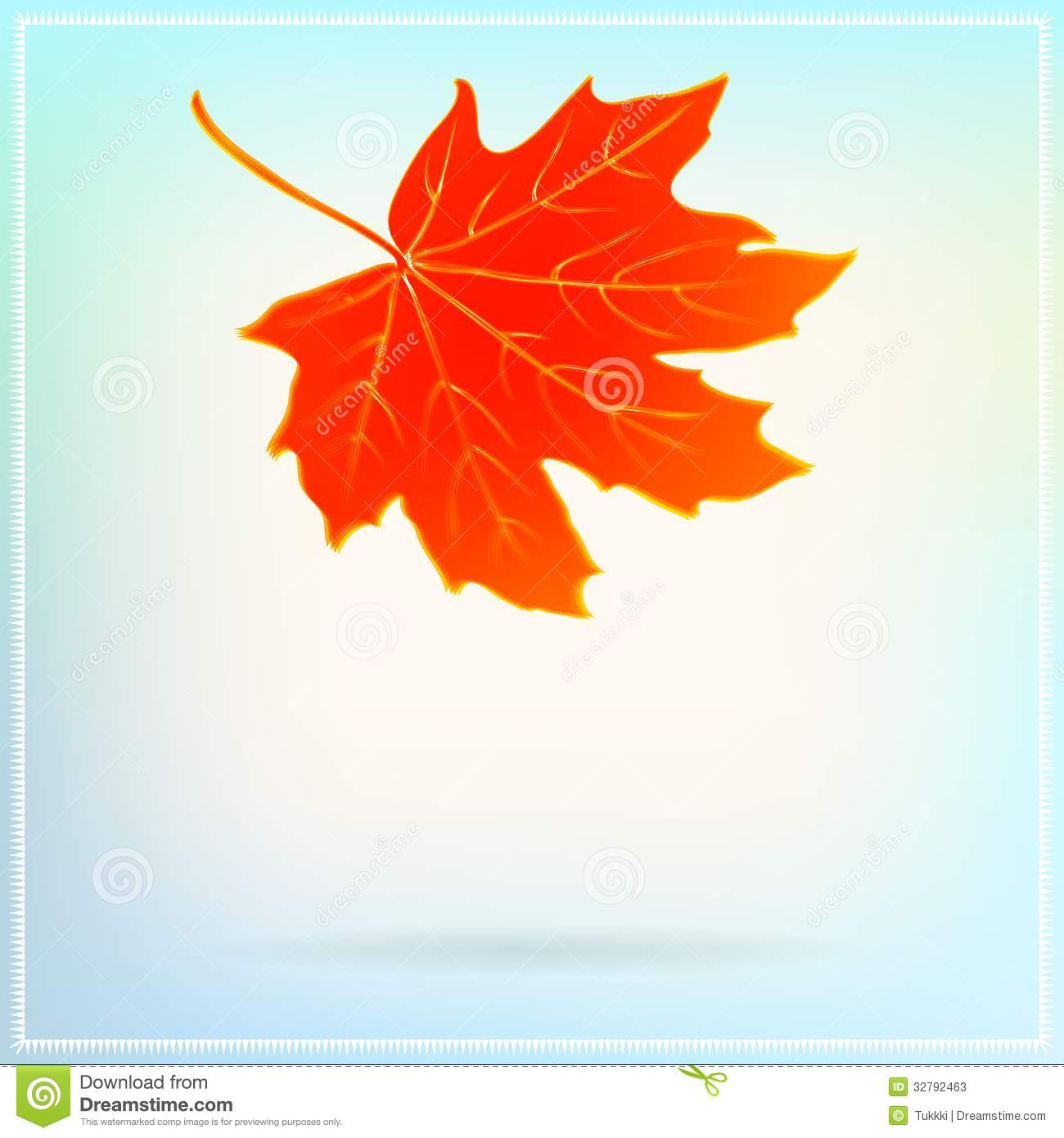 falling maple leaf on abstract white background stock