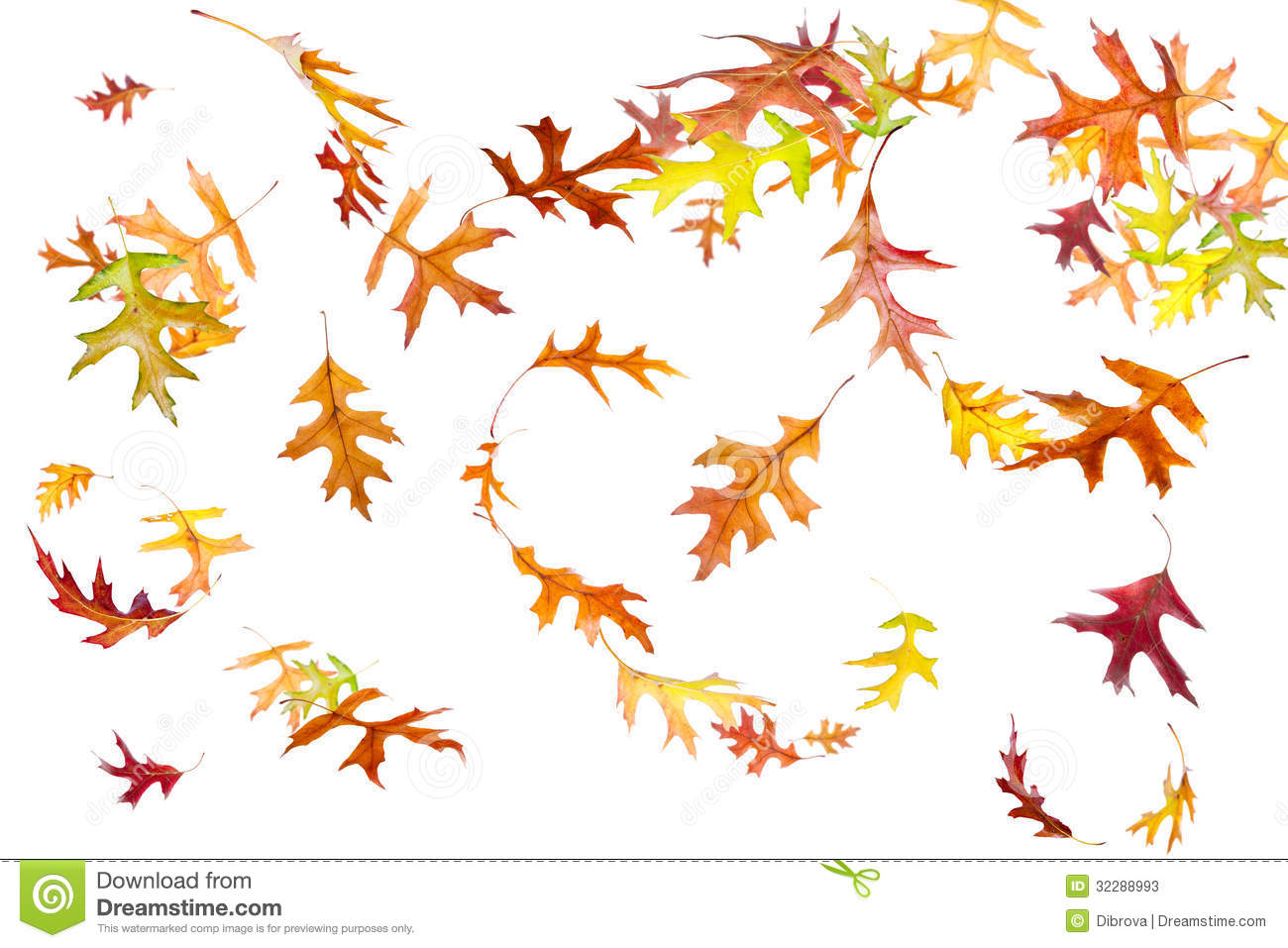 Falling And Spinning Autumn Leaves Stock Image Image Of