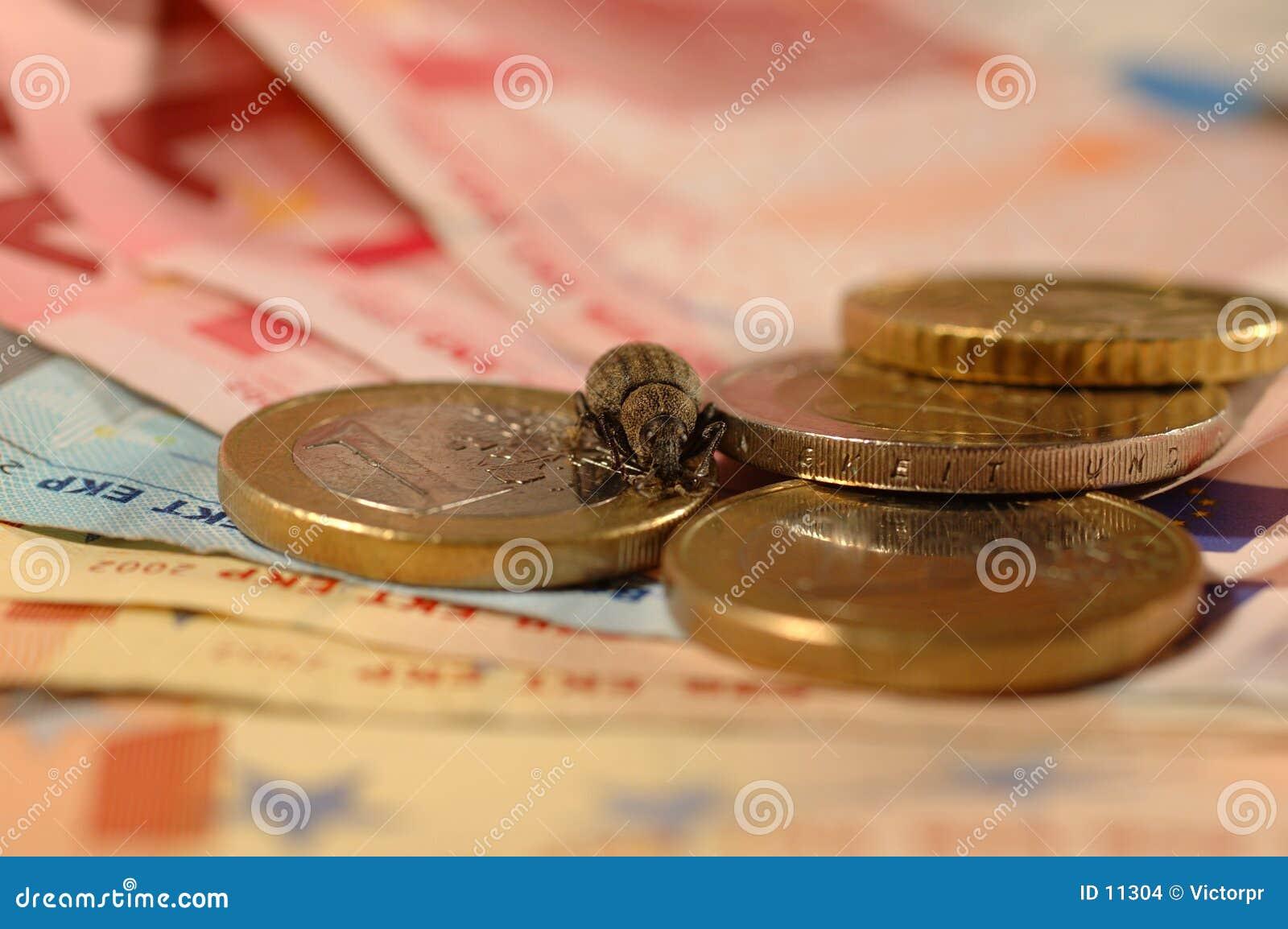 Fallo de funcionamiento del dinero