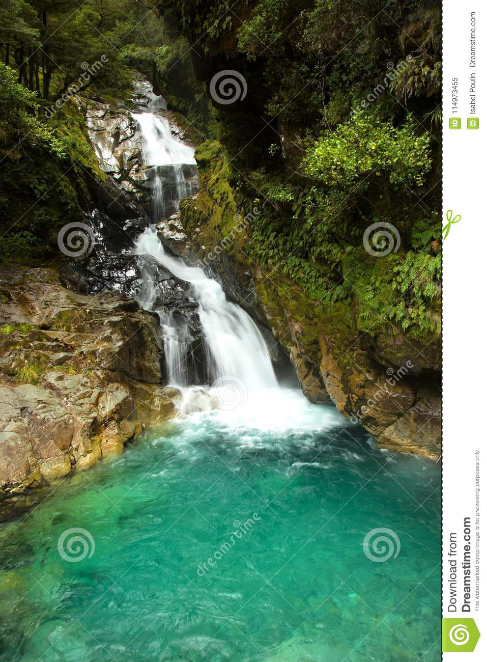 Falls Creek Waterfalls In New Zealand Stock Image Image Of Motion