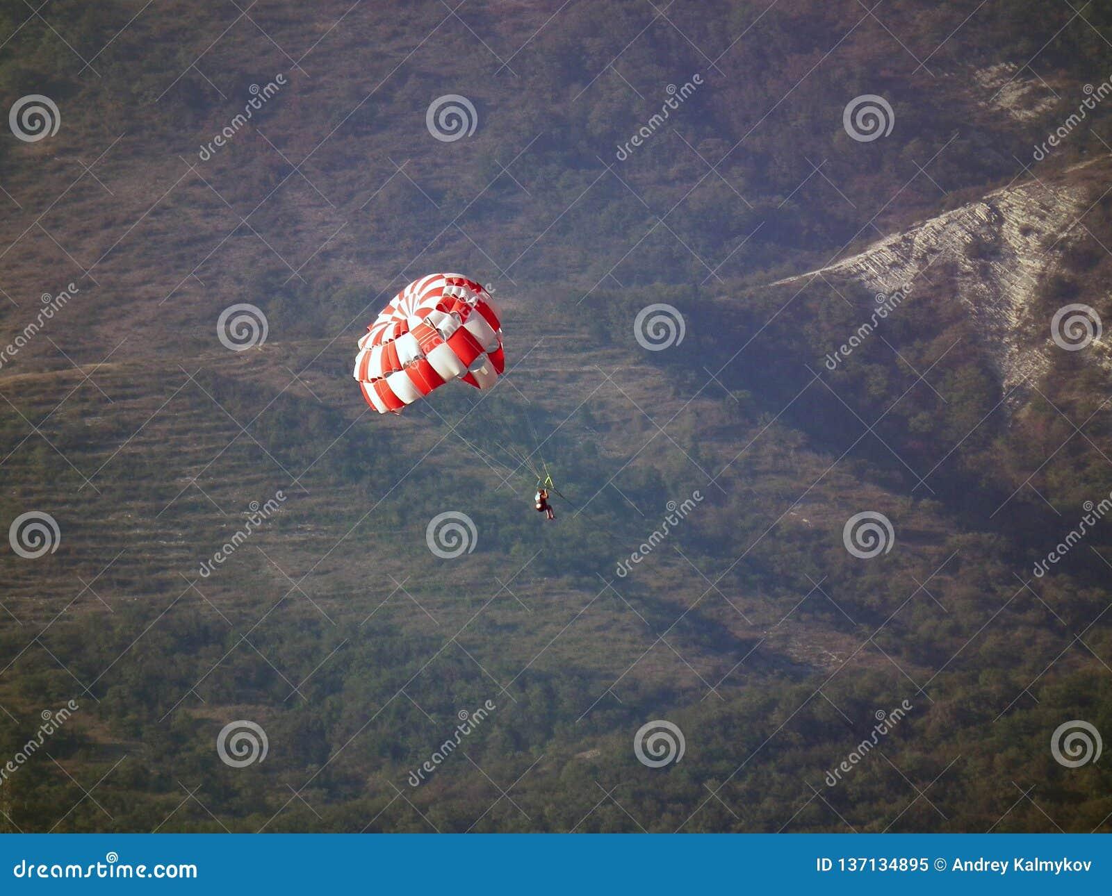 Fallskärmshopparen på ett rött och vit hoppa fallskärm stiger ned mot bakgrunden av skogberg